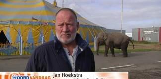 hoekstra olifant