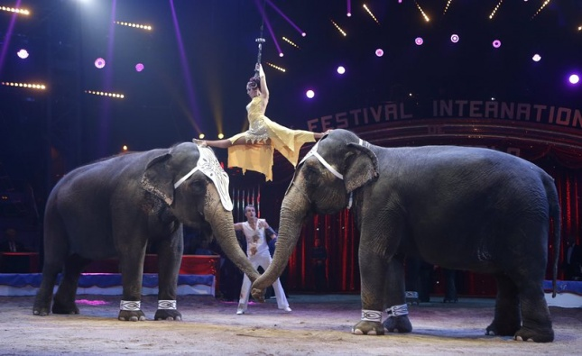 olifantenmontecarlo