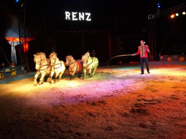 ponies Renz Berlin, foto pr