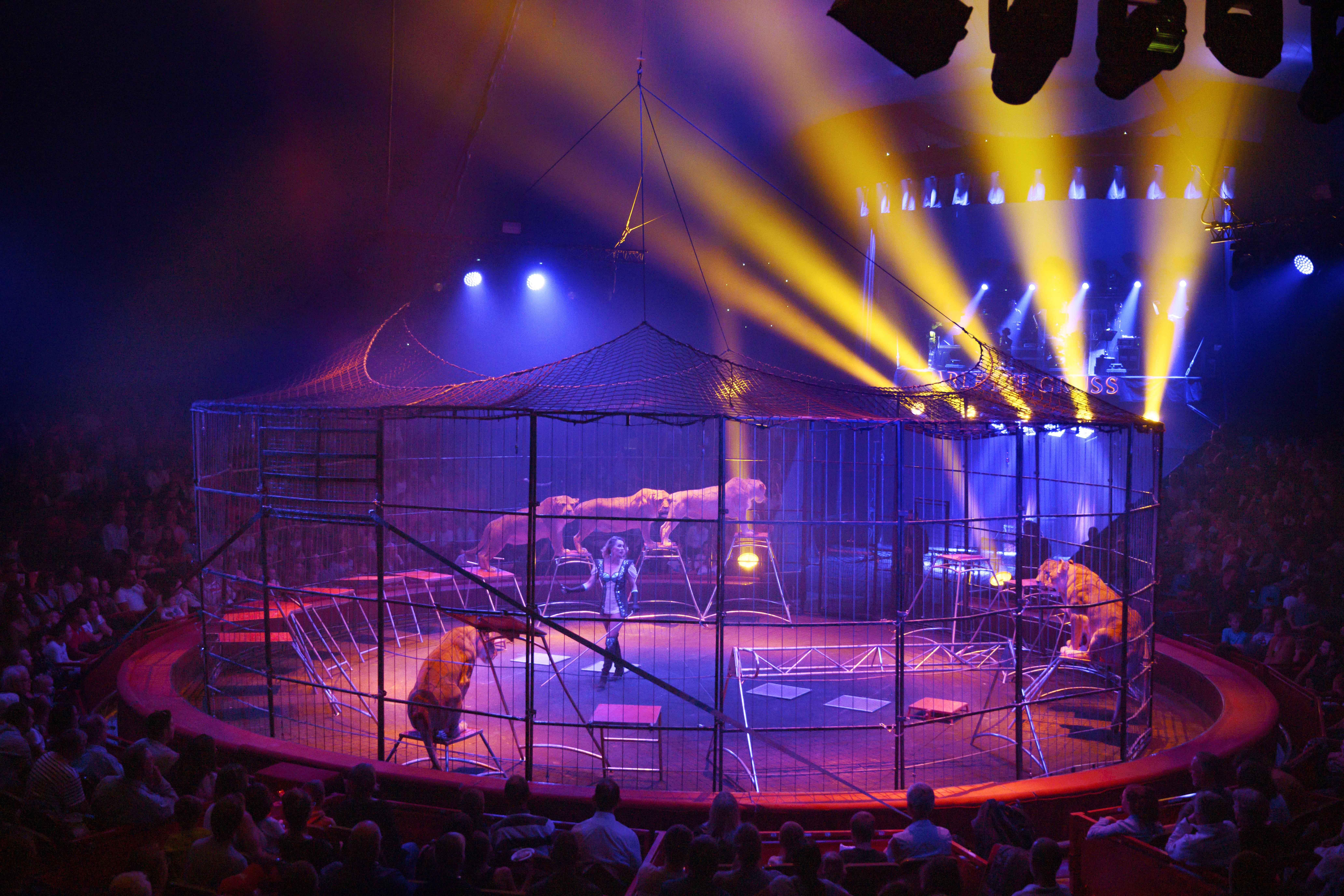 Roofdieren Arlette Gruss op Circusweb